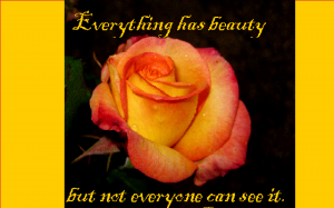 everything has beauty 1-13